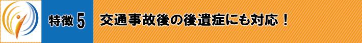特徴5.交通事故後の後遺症にも対応!